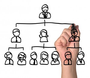 effective managers organization design effective managers