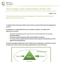 The Unique And Critical Role of the CEO