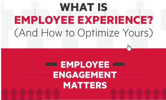 How to Optimize the Employee Experience